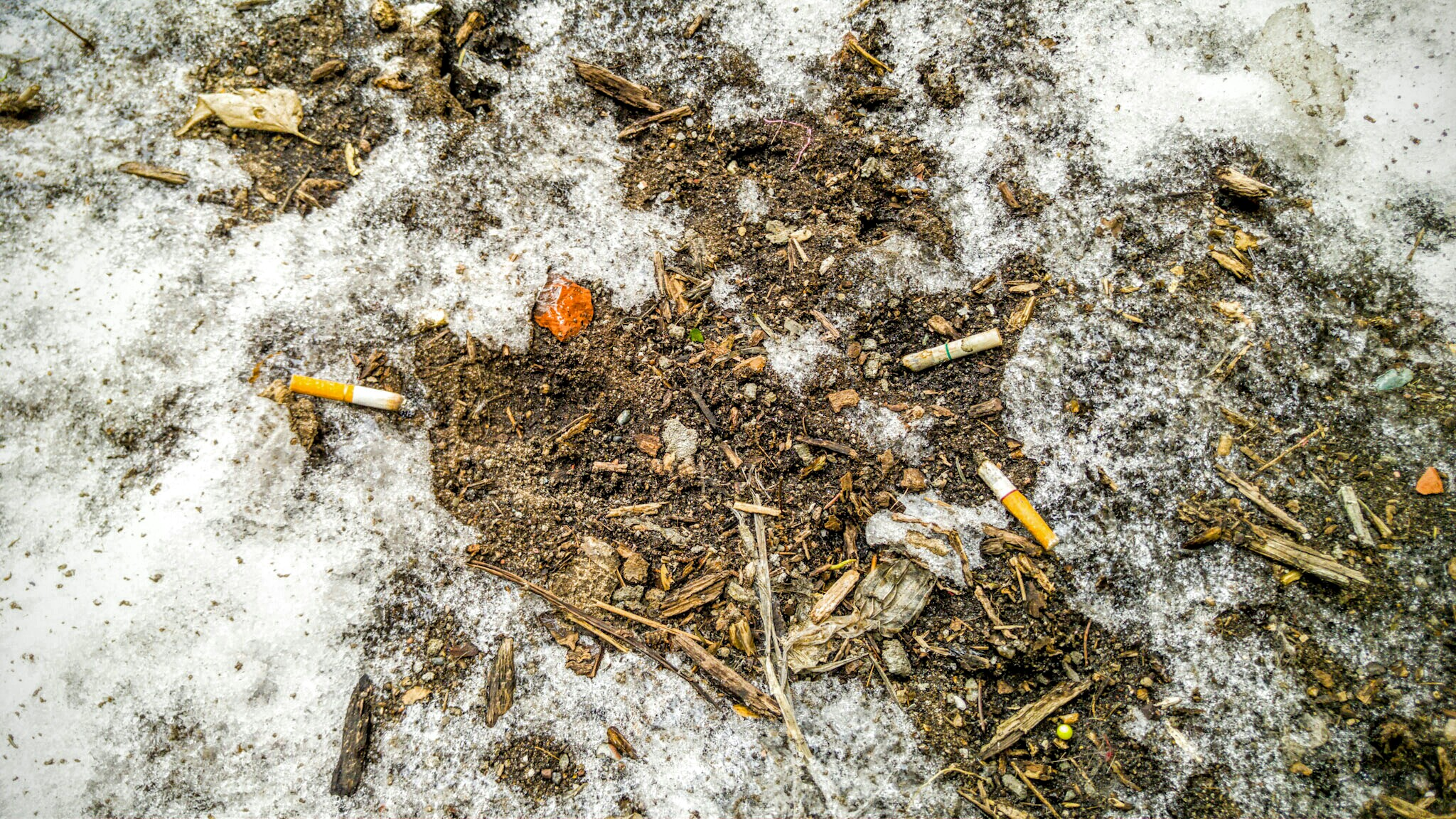 Cigarette butts. So many cigarette butts. They are - by far - the most common items that emerge after the snow recedes.