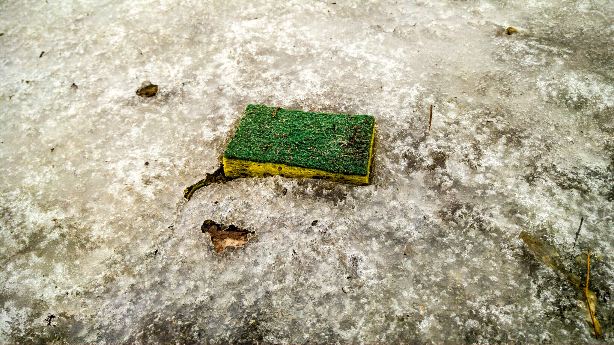 A sponge. There is a story here - about dishes and misguided attempt at cleaning up. I'm sure of it.