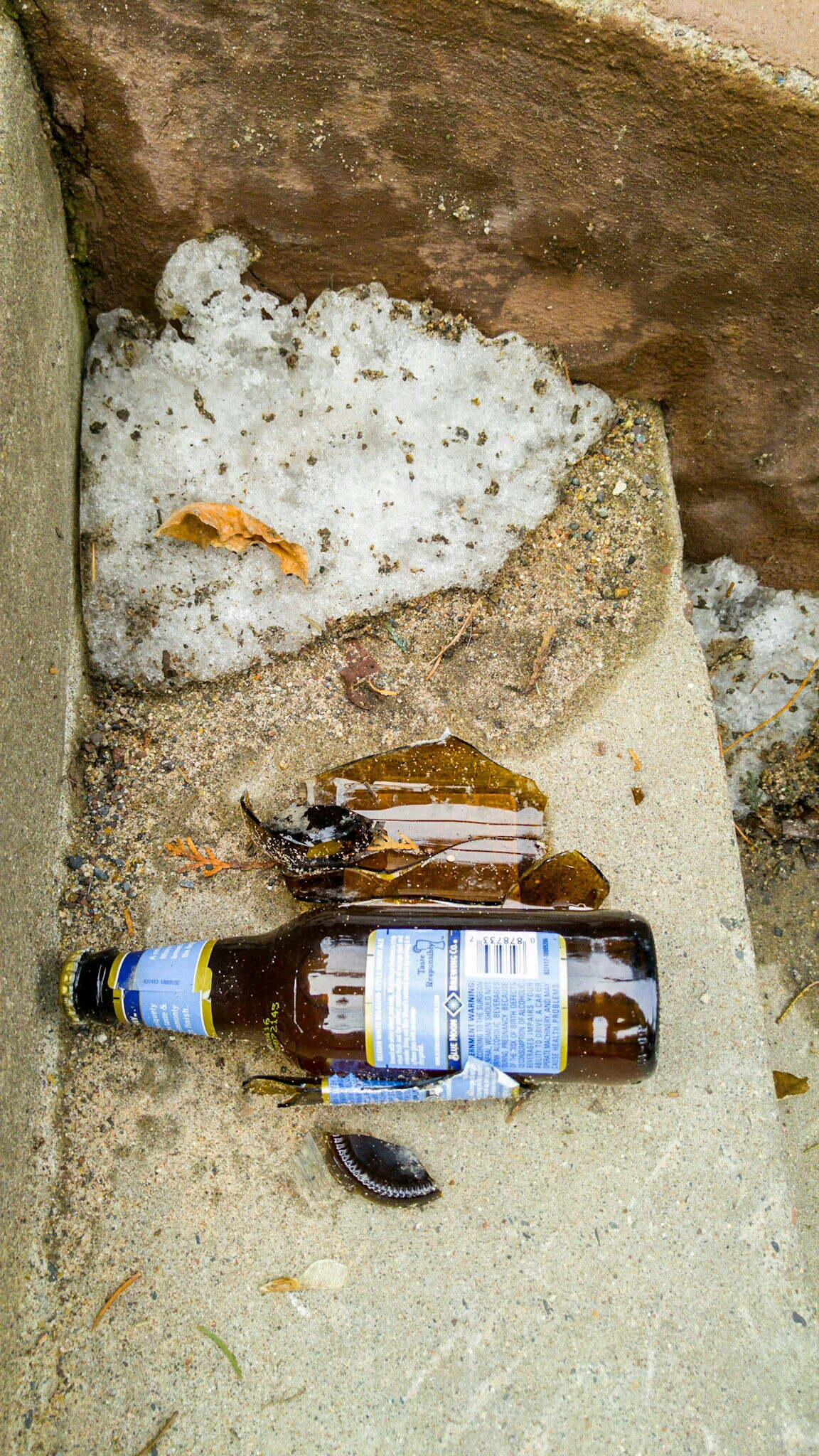 Beer Bottles. Left over - presumably - from the many occasions that one drinks outside in the winter.